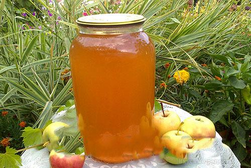 Яблочный сок и повидло из соковарки