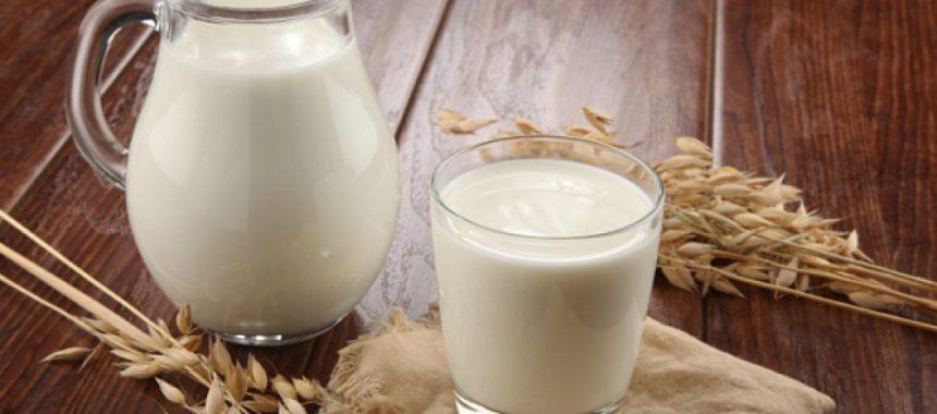 Польза и вред козьего молока для организма человека