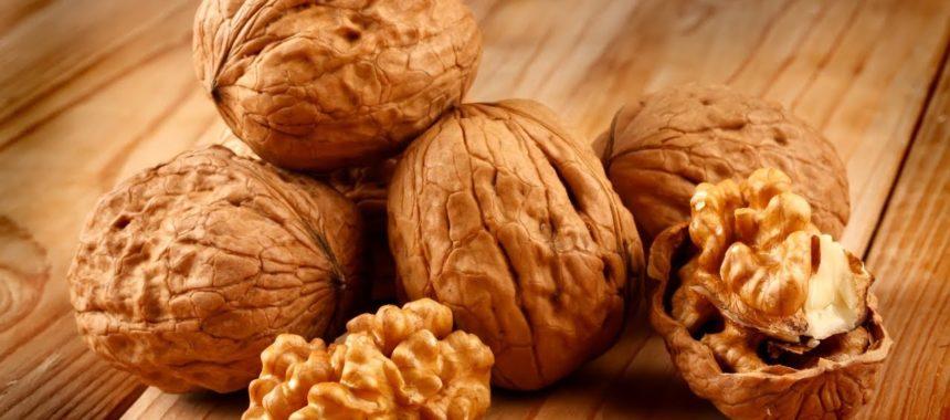Грецкий орех – польза и вред для организма человека, калорийность и состав