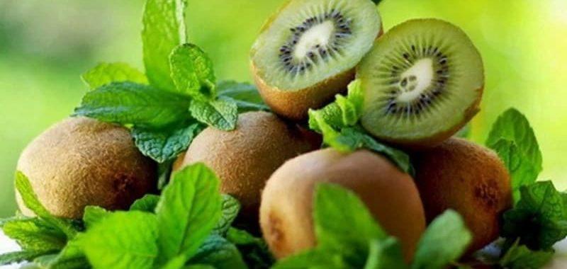 Киви – польза и вред для организма человека, калорийность