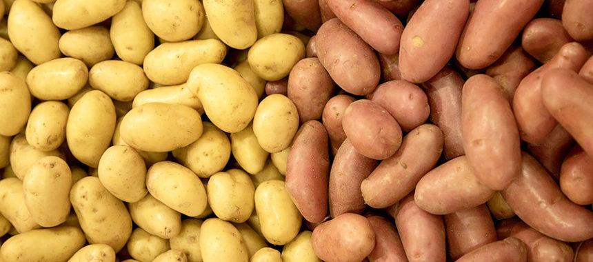 Калорийность картофеля на 100 грамм