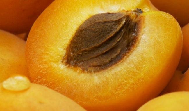 Абрикосовое масло рецепт приготовления