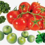 Яблочный и томатный сыр рецепт приготовления