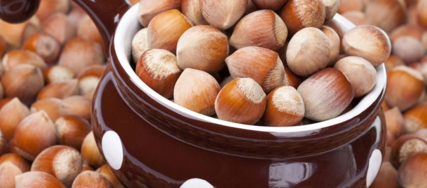 Калорийность фундука на 100 грамм