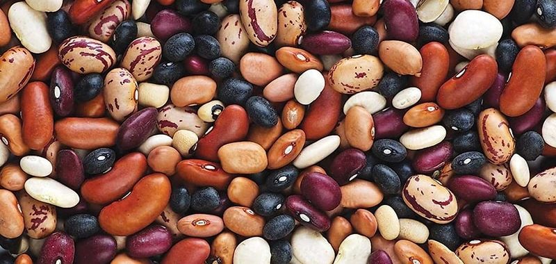 Калорийность фасоли на 100 грамм – витамины
