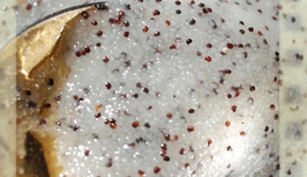 Манно-маковая каша рецепт приготовления