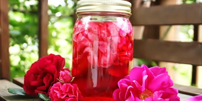 Рецепт ликера из чайной розы